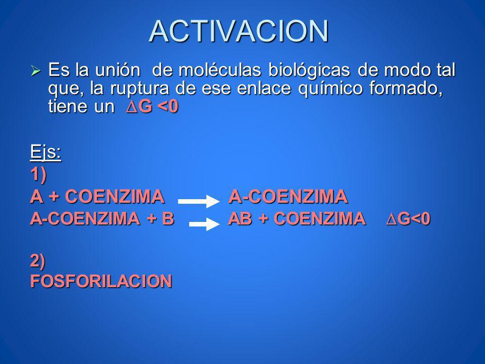 ACTIVACION Es la unión de moléculas biológicas de modo tal que, la ruptura de ese enlace químico formado, tiene un G <0 Es la unión de moléculas bioló