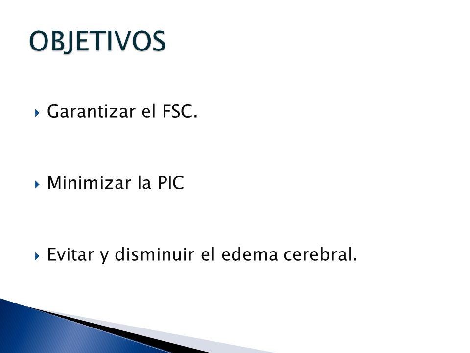 Garantizar el FSC. Minimizar la PIC Evitar y disminuir el edema cerebral.