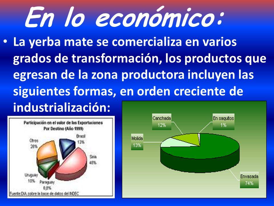Proceso Productivo: La yerba mate en argentina solo puede cultivarse en dos provincias: Misiones y Corrientes…