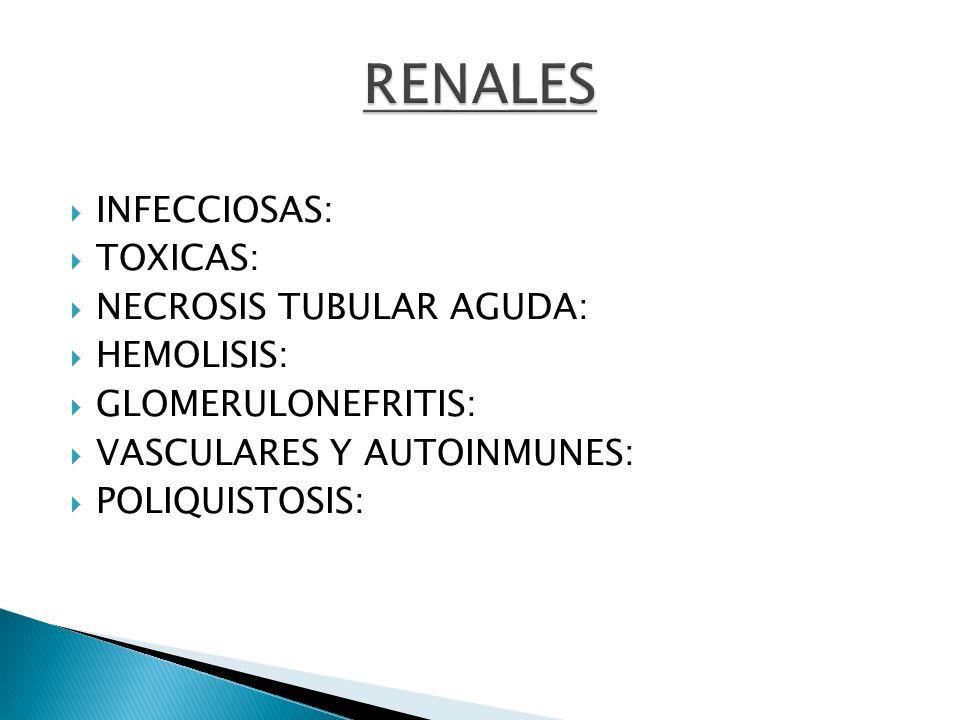 INFECCIOSAS: TOXICAS: NECROSIS TUBULAR AGUDA: HEMOLISIS: GLOMERULONEFRITIS: VASCULARES Y AUTOINMUNES: POLIQUISTOSIS: