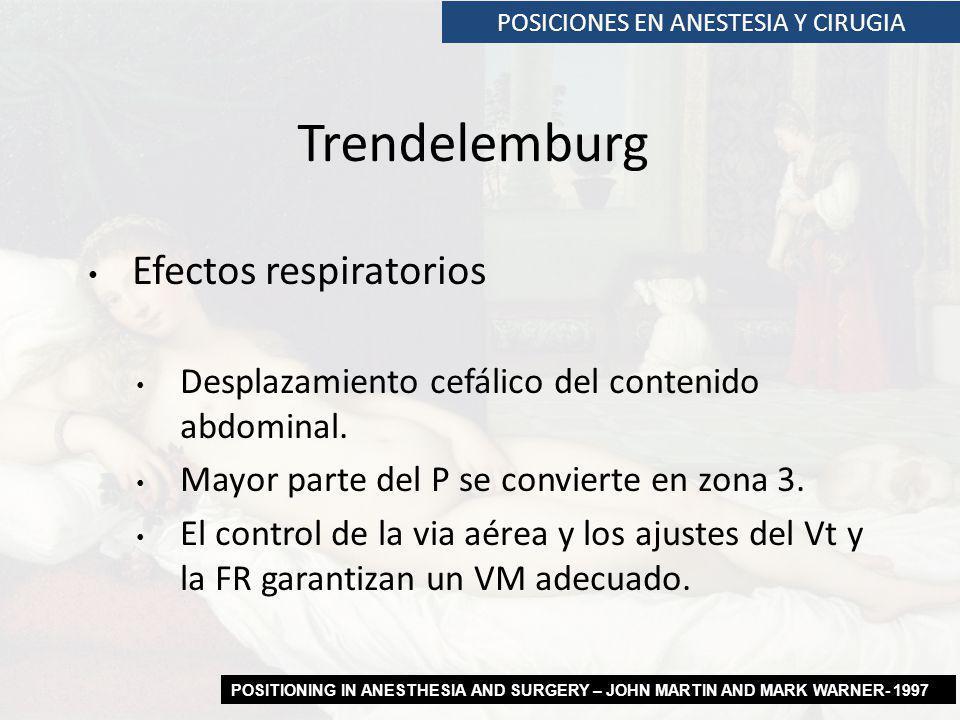 Efectos respiratorios Desplazamiento cefálico del contenido abdominal. Mayor parte del P se convierte en zona 3. El control de la via aérea y los ajus
