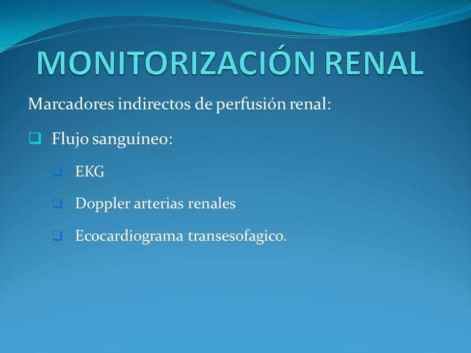 Marcadores indirectos de perfusión renal: Flujo sanguíneo: EKG Doppler arterias renales Ecocardiograma transesofagico.