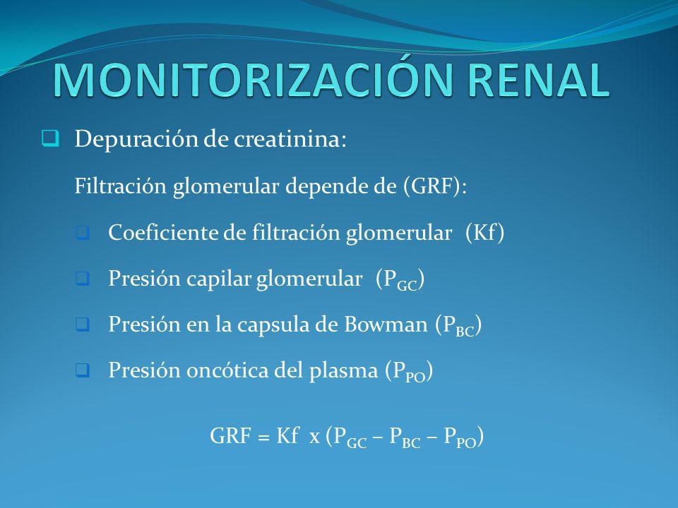 Depuración de creatinina: Filtración glomerular depende de (GRF): Coeficiente de filtración glomerular (Kf) Presión capilar glomerular (P GC ) Presión en la capsula de Bowman (P BC ) Presión oncótica del plasma (P PO ) GRF = Kf x (P GC – P BC – P PO )