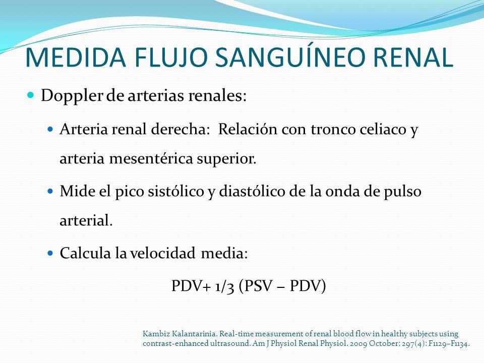 MEDIDA FLUJO SANGUÍNEO RENAL Doppler de arterias renales: Arteria renal derecha: Relación con tronco celiaco y arteria mesentérica superior.