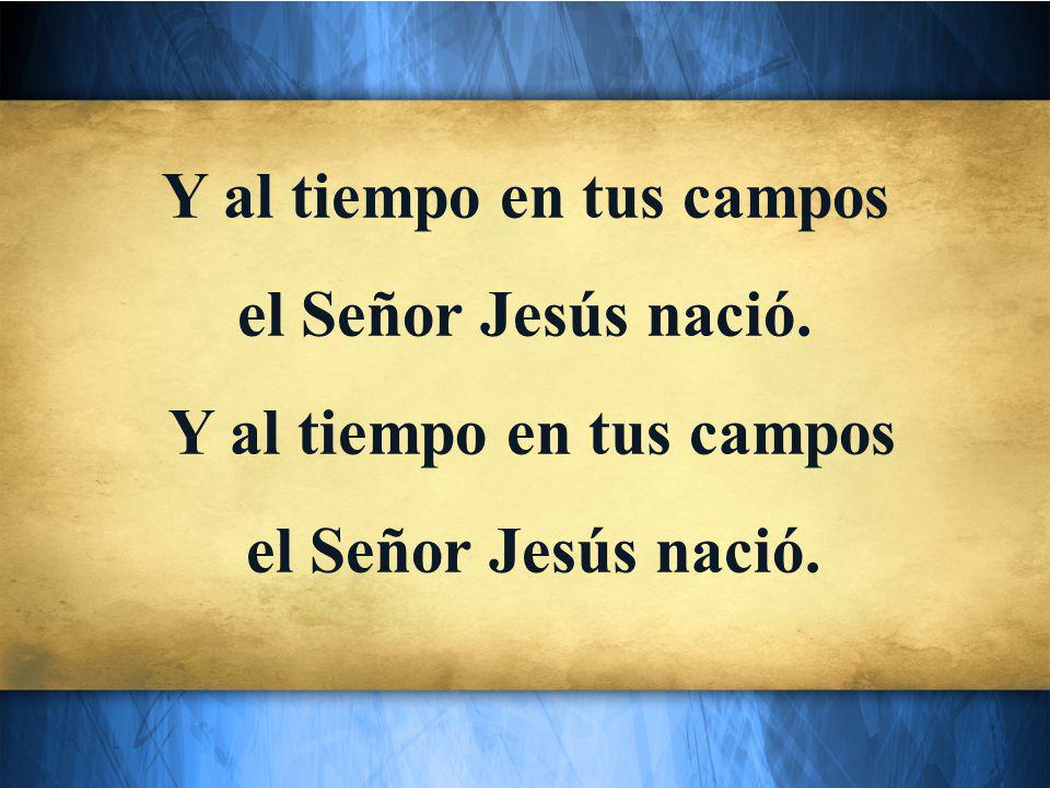 Y al tiempo en tus campos el Señor Jesús nació. Y al tiempo en tus campos el Señor Jesús nació.