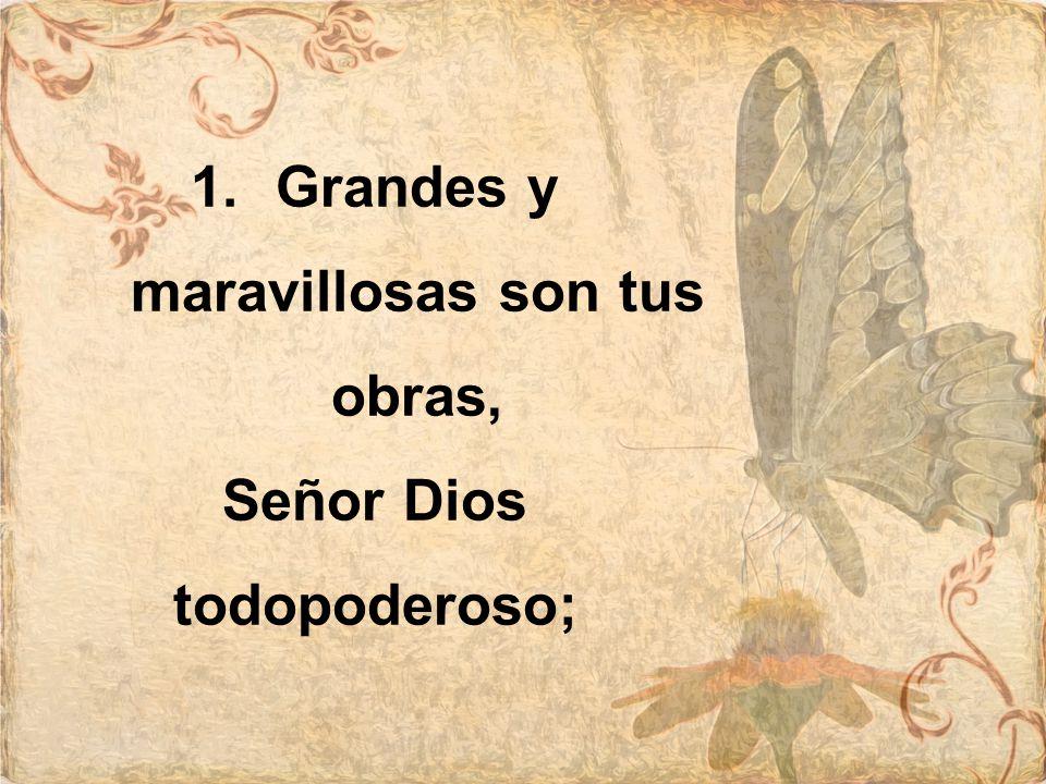 Justos y verdaderos son tus caminos, Rey de los santos, Rey de los santos.