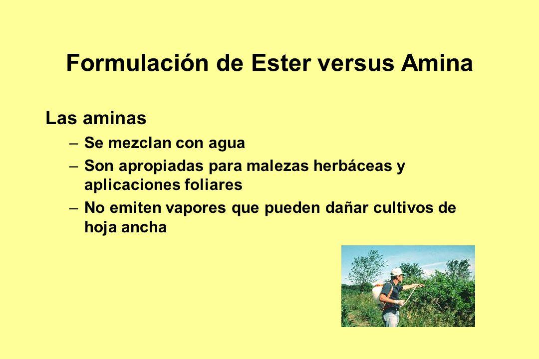 Formulación de Ester versus Amina Las aminas –Se mezclan con agua –Son apropiadas para malezas herbáceas y aplicaciones foliares –No emiten vapores qu