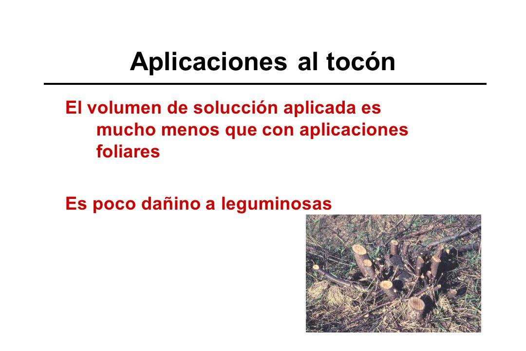Aplicaciones al tocón El volumen de solucción aplicada es mucho menos que con aplicaciones foliares Es poco dañino a leguminosas