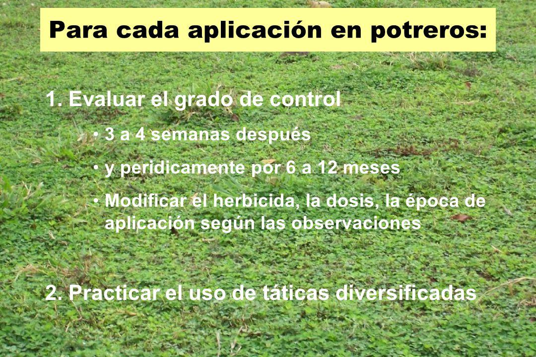 Para cada aplicación en potreros: 1. Evaluar el grado de control 3 a 4 semanas después y peridicamente por 6 a 12 meses Modificar el herbicida, la dos