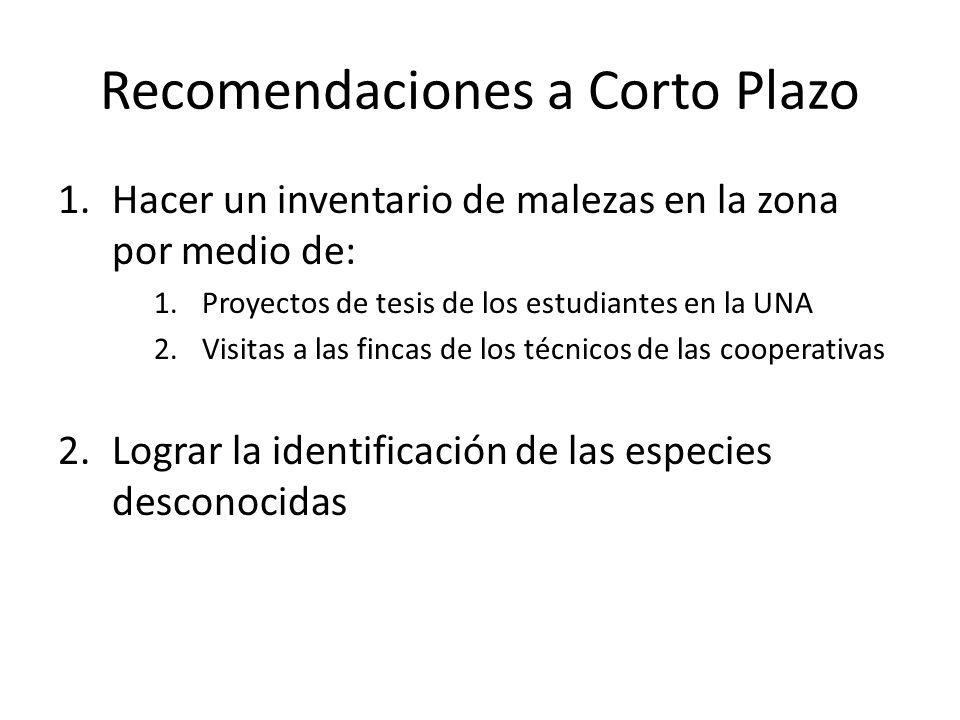 Recomendaciones a Corto Plazo 1.Hacer un inventario de malezas en la zona por medio de: 1.Proyectos de tesis de los estudiantes en la UNA 2.Visitas a
