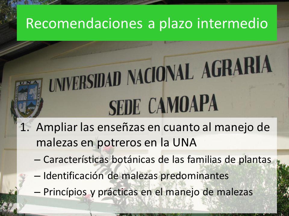 Recomendaciones a plazo intermedio 1.Ampliar las enseñzas en cuanto al manejo de malezas en potreros en la UNA – Características botánicas de las fami