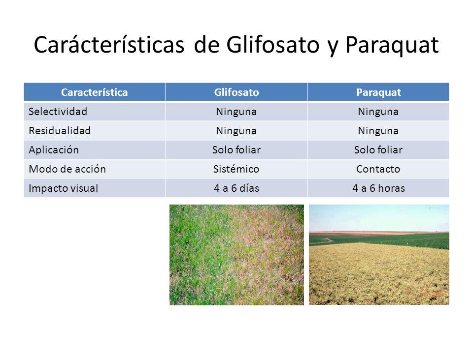 Carácterísticas de Glifosato y Paraquat CaracterísticaGlifosatoParaquat SelectividadNinguna ResidualidadNinguna AplicaciónSolo foliar Modo de acciónSi
