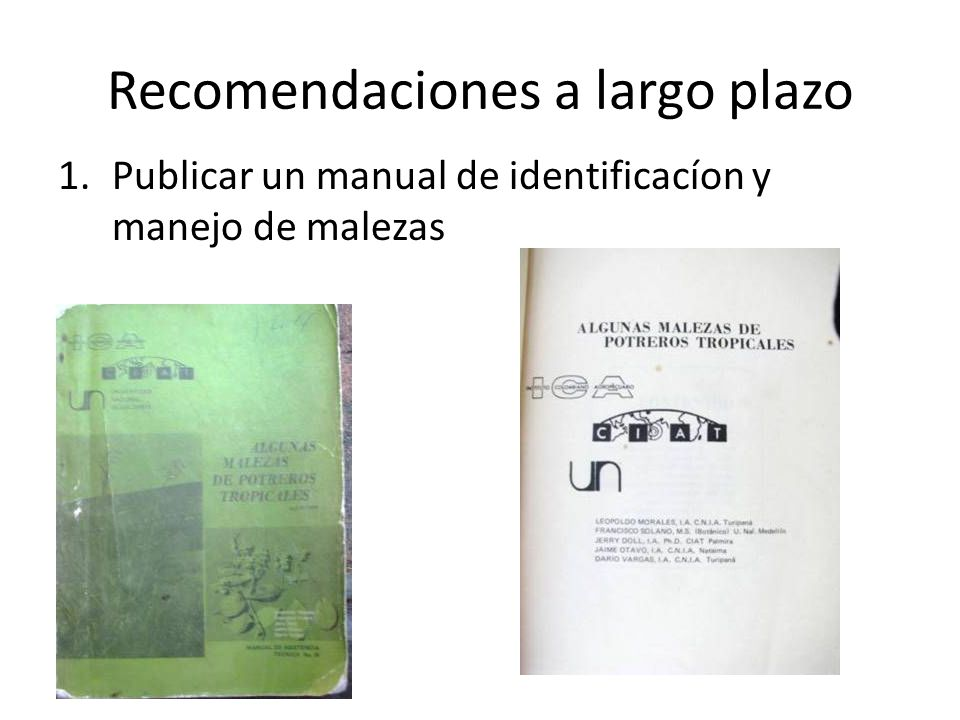 Recomendaciones a largo plazo 1.Publicar un manual de identificacíon y manejo de malezas