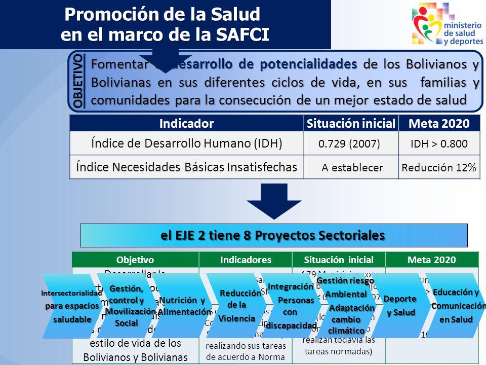 ObjetivoIndicadoresSituación inicialMeta 2020 Desarrollar la participación social y la promoción de la salud para mejorar y disminuir las desigualdade