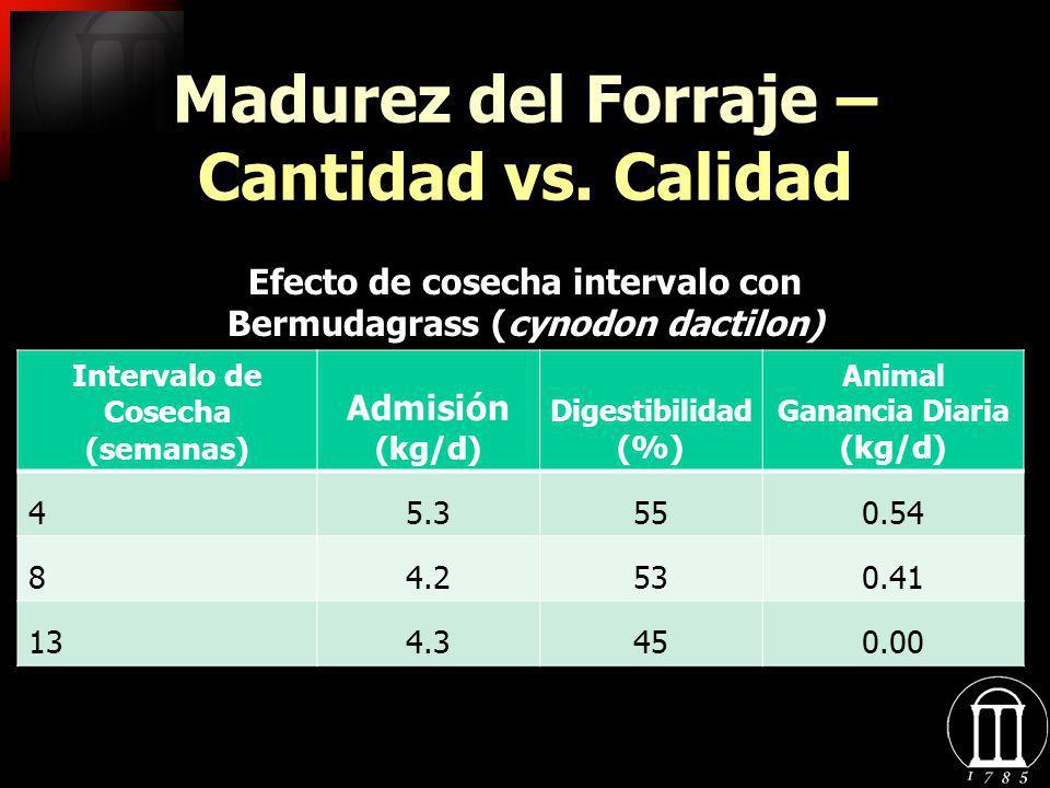 Madurez del Forraje – Cantidad vs. Calidad Intervalo de Cosecha (semanas) Admisión (kg/d) Digestibilidad (%) Animal Ganancia Diaria (kg/d) 45.3550.54