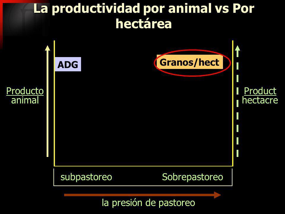 la presión de pastoreo La productividad por animal vs Por hectárea subpastoreo Sobrepastoreo Producto animal Producto animal Product hectacre Product