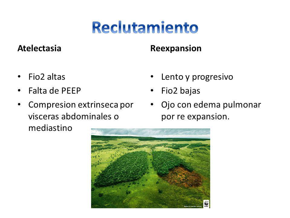 Atelectasia Fio2 altas Falta de PEEP Compresion extrinseca por visceras abdominales o mediastino Reexpansion Lento y progresivo Fio2 bajas Ojo con ede