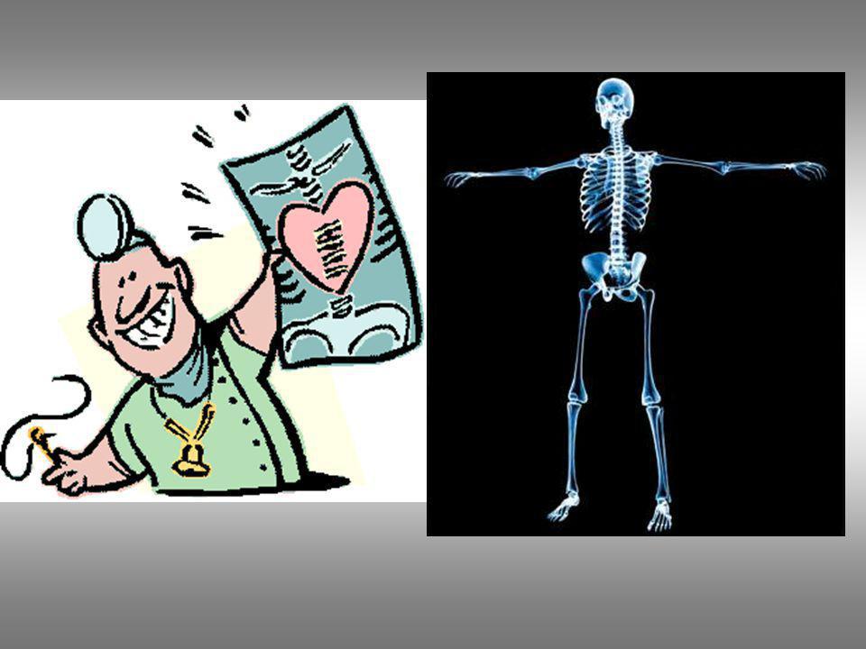 POSICION ANATOMICA De pie, brazos en aducción ( hacia abajo ),palmas, pies y cabeza hacia delante.