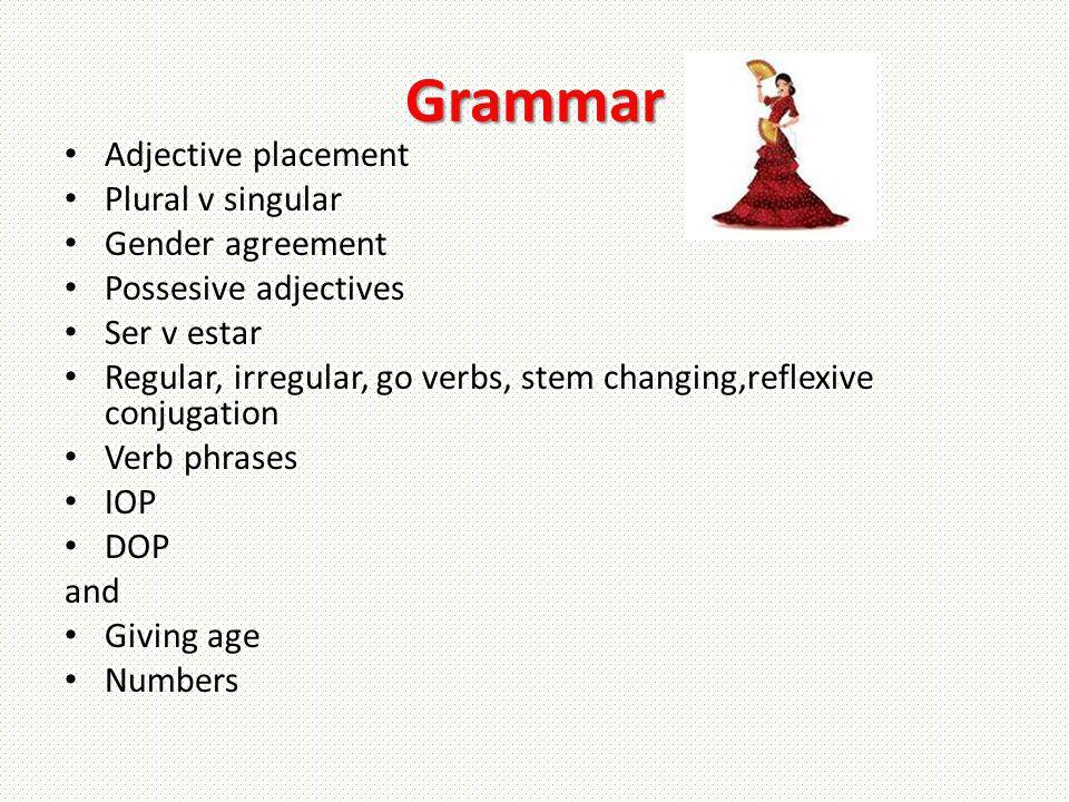 Grammar Adjective placement Plural v singular Gender agreement Possesive adjectives Ser v estar Regular, irregular, go verbs, stem changing,reflexive
