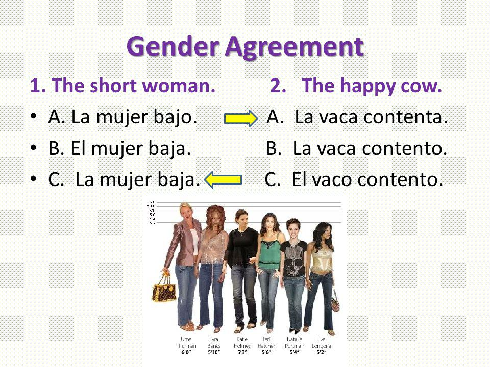 Gender Agreement 1. The short woman. 2. The happy cow.