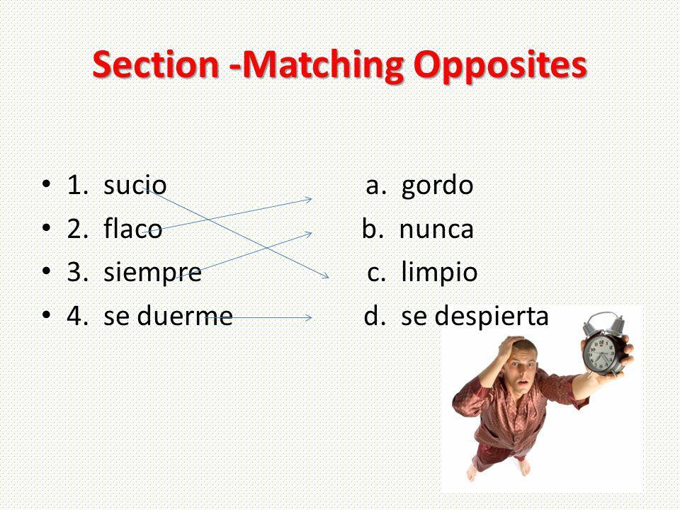 Section -Matching Opposites 1. sucio a. gordo 2. flaco b. nunca 3. siempre c. limpio 4. se duerme d. se despierta