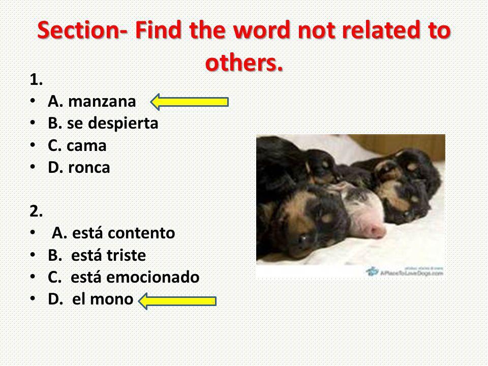 Section- Find the word not related to others. 1. A. manzana B. se despierta C. cama D. ronca 2. A. está contento B. está triste C. está emocionado D.