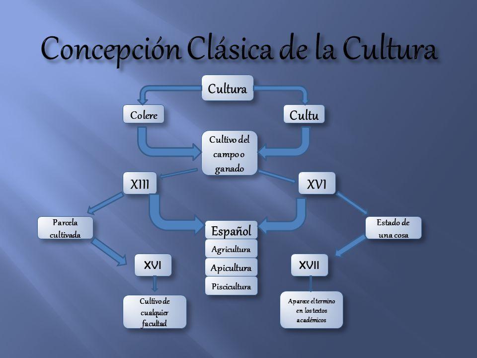 Cultura Cultu Colere Cultivo del campo o ganado XIII Parcela cultivada XVI Estado de una cosa Español Agricultura Apicultura Piscicultura XVI XVII Cul