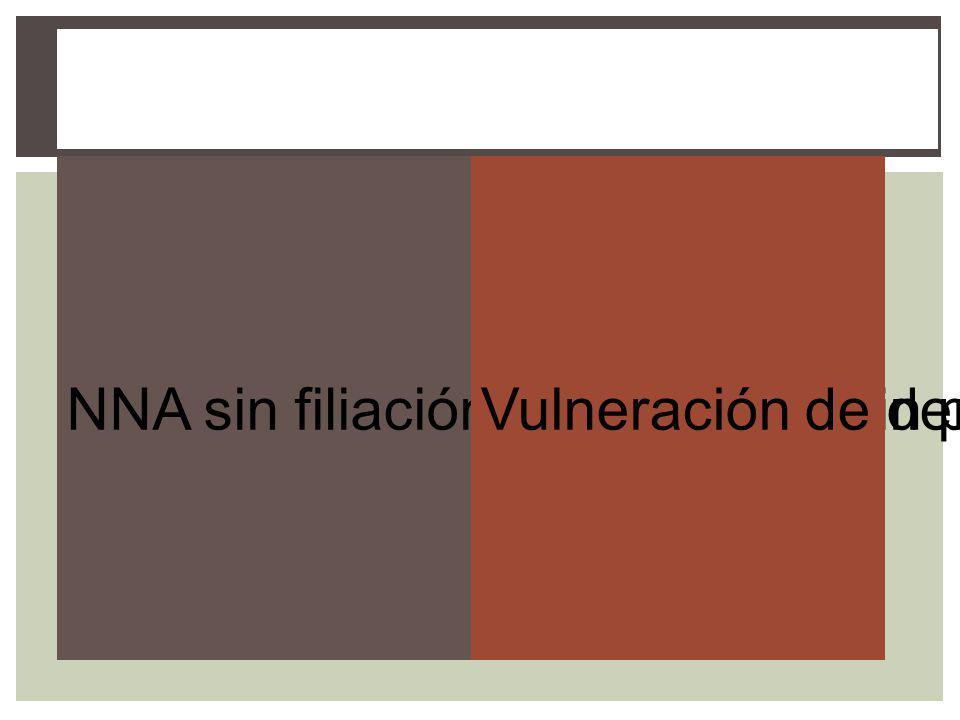 NNA sin filiación acreditada o sin progenitoresVulneración de derechos de NNA dentro de su familia Procedencia