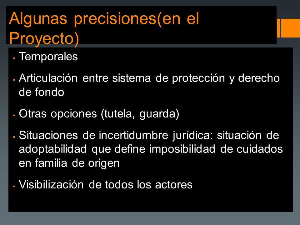 Algunas precisiones(en el Proyecto) Temporales Articulación entre sistema de protección y derecho de fondo Otras opciones (tutela, guarda) Situaciones
