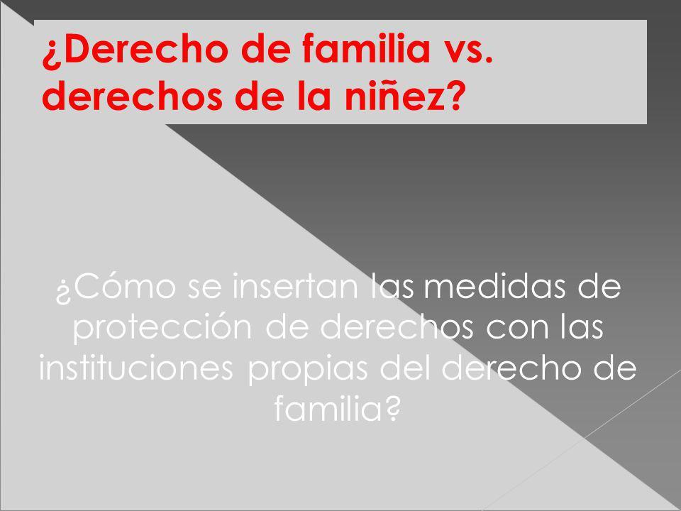 ¿Derecho de familia vs. derechos de la niñez? ¿Cómo se insertan las medidas de protección de derechos con las instituciones propias del derecho de fam