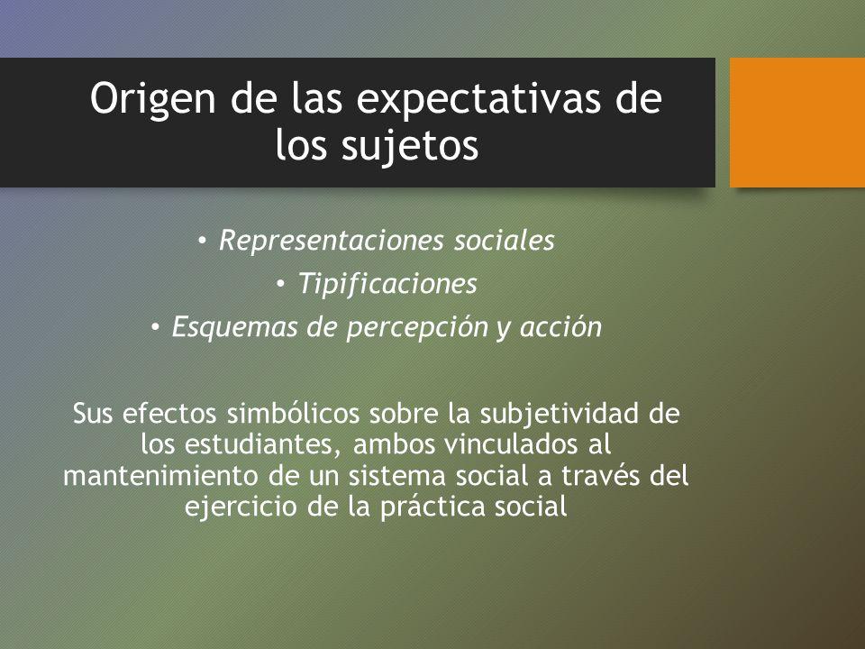 Origen de las expectativas de los sujetos Representaciones sociales Tipificaciones Esquemas de percepción y acción Sus efectos simbólicos sobre la sub