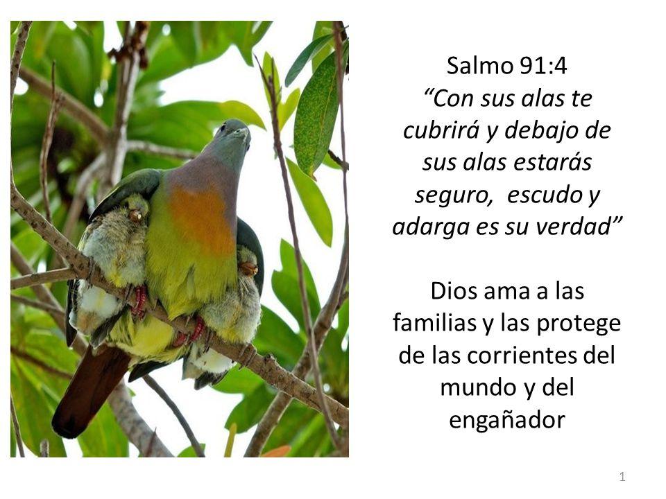 Salmo 91:4 Con sus alas te cubrirá y debajo de sus alas estarás seguro, escudo y adarga es su verdad Dios ama a las familias y las protege de las corrientes del mundo y del engañador 1