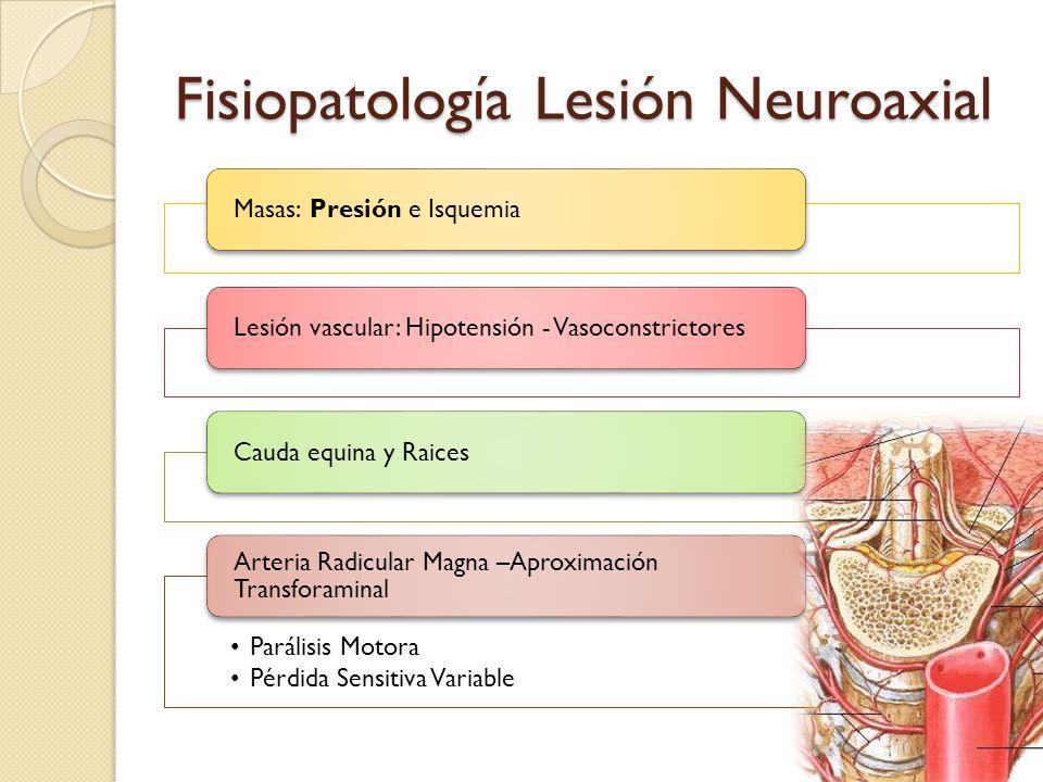 Fisiopatología Lesión Neuroaxial Masas: Presión e IsquemiaLesión vascular: Hipotensión - VasoconstrictoresCauda equina y Raices Parálisis Motora Pérdi