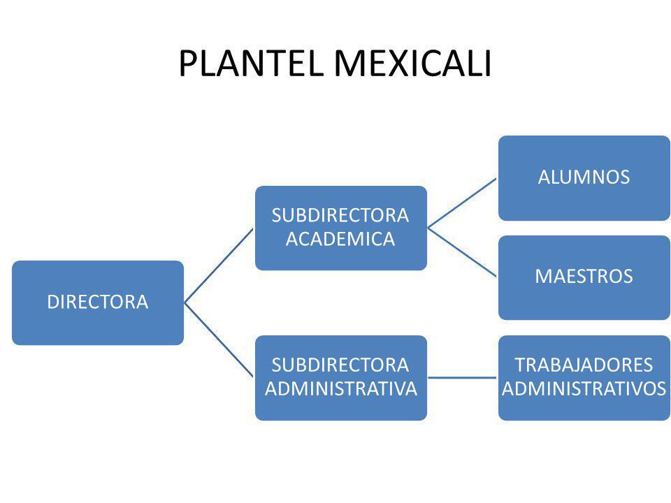 PLANTEL MEXICALI DIRECTORA SUBDIRECTORA ACADEMICA ALUMNOSMAESTROS SUBDIRECTORA ADMINISTRATIVA TRABAJADORES ADMINISTRATIVOS