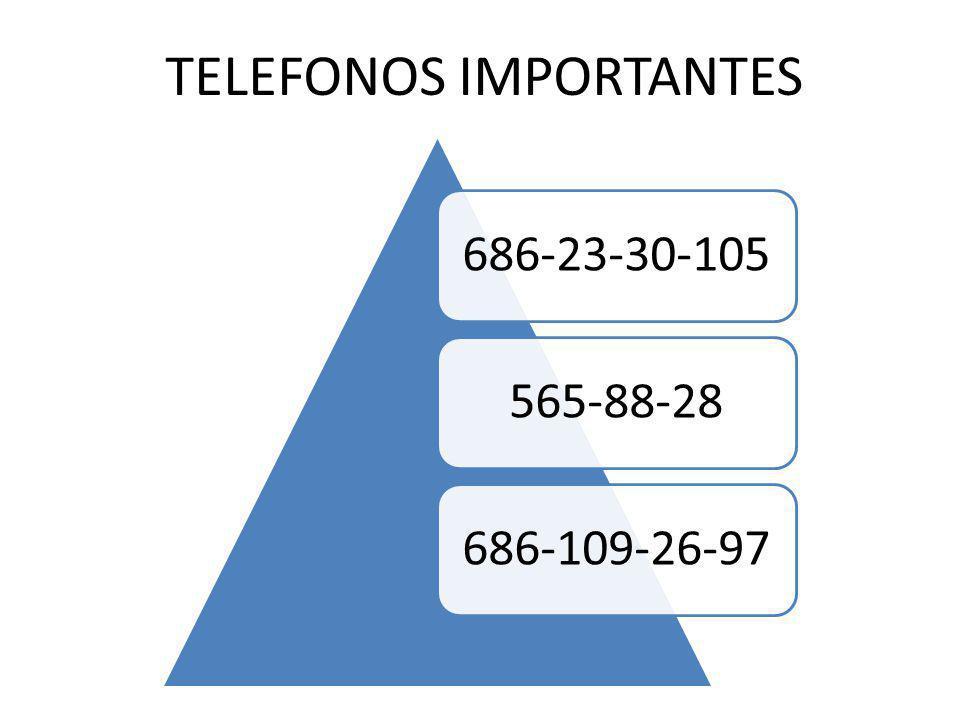 TELEFONOS IMPORTANTES 686-23-30-105565-88-28686-109-26-97