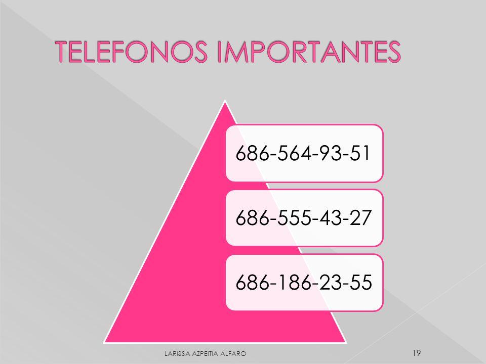 686-564-93-51686-555-43-27686-186-23-55 LARISSA AZPEITIA ALFARO 19