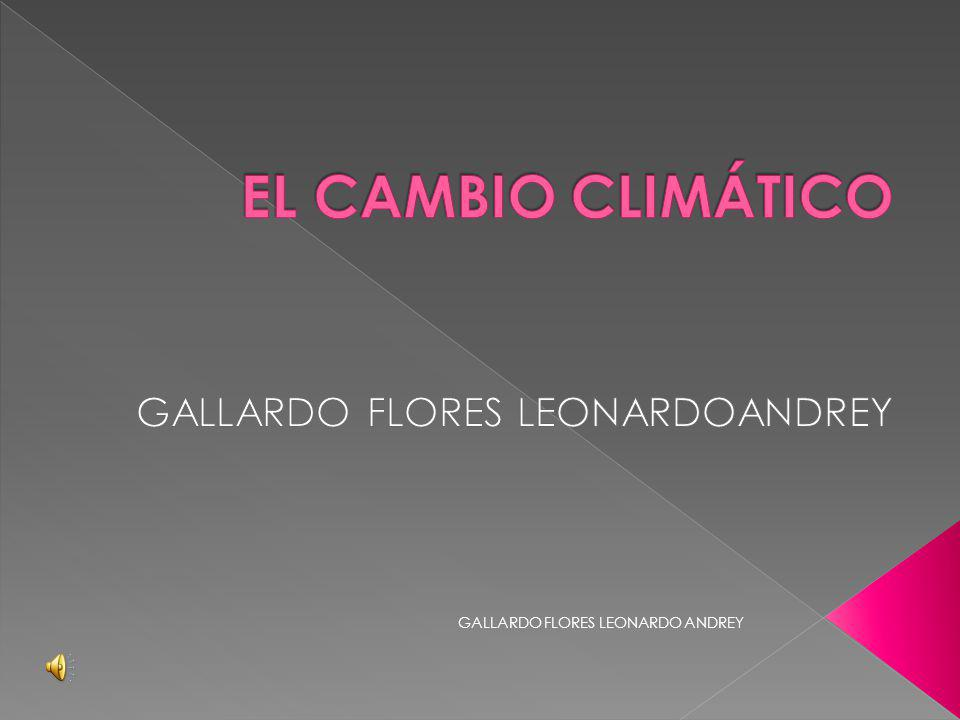 GALLARDO FLORES LEONARDO ANDREY