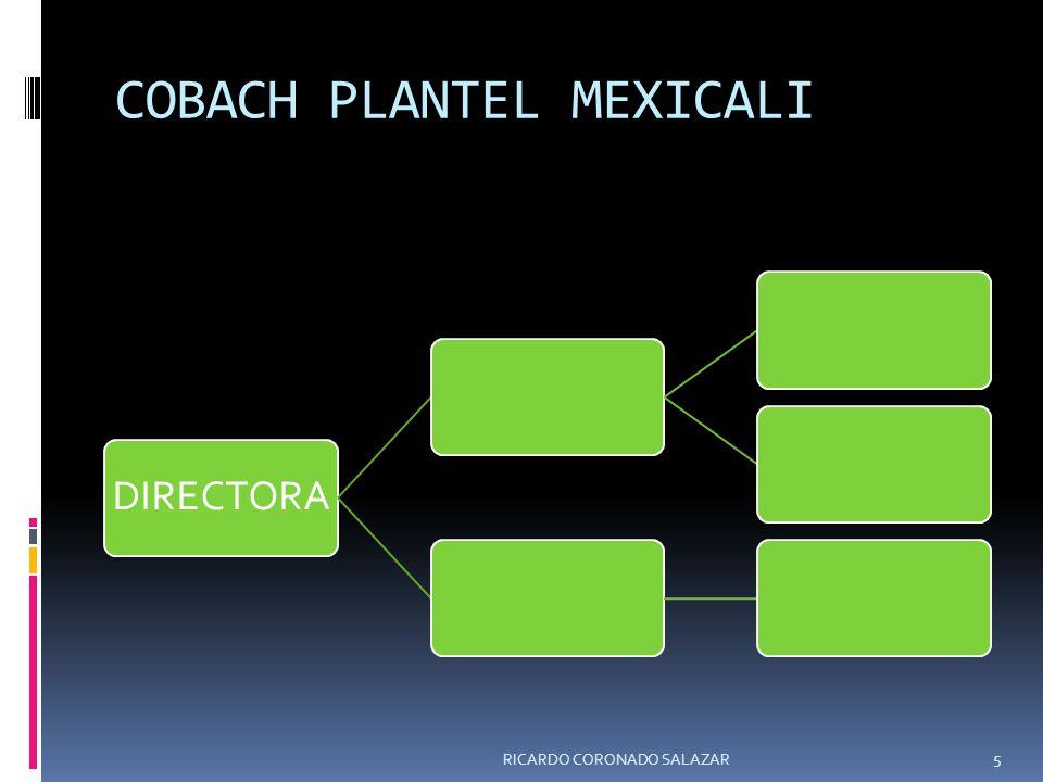 COBACH PLANTEL MEXICALI DIRECTORA RICARDO CORONADO SALAZAR 5