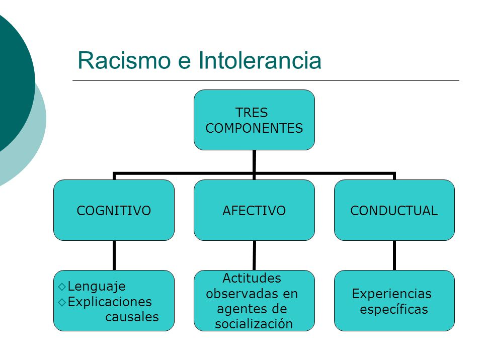 Racismo e Intolerancia TRES COMPONENTES COGNITIVO Lenguaje Explicaciones causales AFECTIVO Actitudes observadas en agentes de socialización CONDUCTUAL