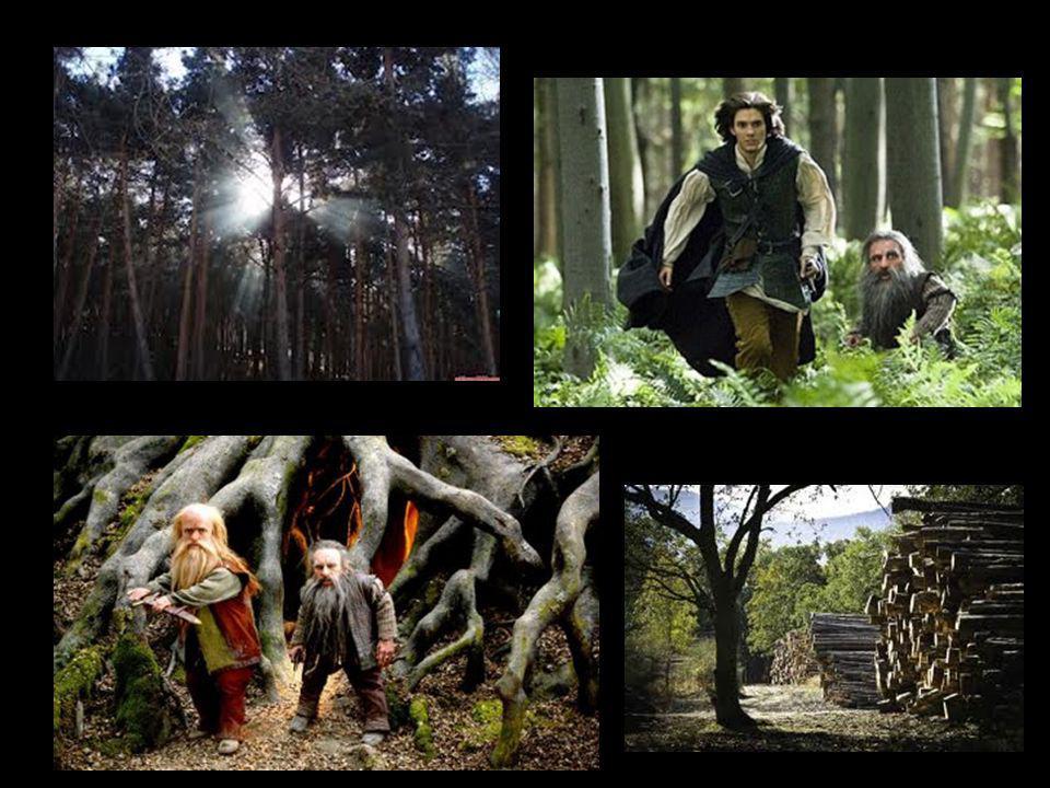 Los personajes narnianos aparecen entre los bosques, para unirse al príncipe Caspian.