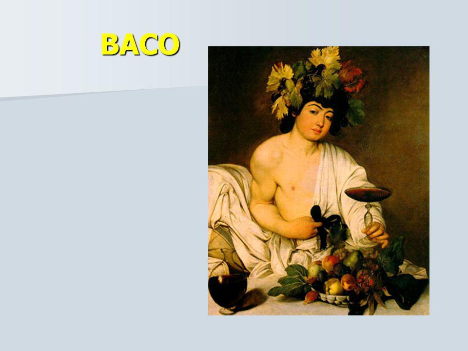 CARAVAGGIO Su pintura se basó en la observación directa de la realidad con toda su crudeza y sus personajes se inspiraron en modelos tomados de la vid