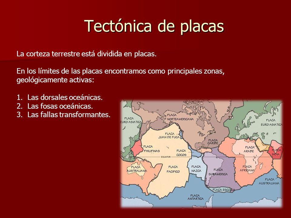 Tectónica de placas La corteza terrestre está dividida en placas. En los límites de las placas encontramos como principales zonas, geológicamente acti