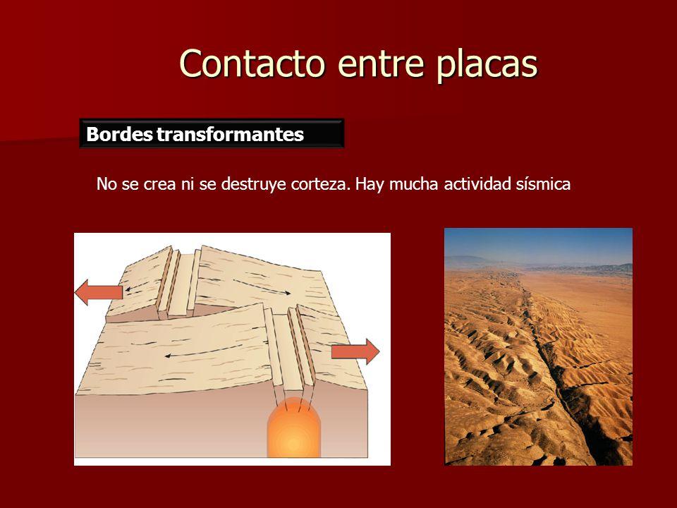 Contacto entre placas Bordes transformantes No se crea ni se destruye corteza. Hay mucha actividad sísmica