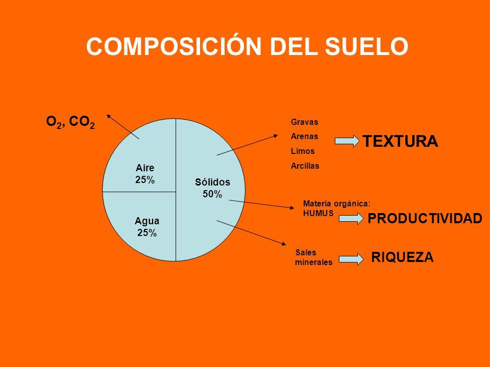 COMPOSICIÓN DEL SUELO Gravas Arenas Limos Arcillas TEXTURA Sólidos 50% Aire 25% Agua 25% Materia orgánica: HUMUS PRODUCTIVIDAD Sales minerales RIQUEZA O 2, CO 2