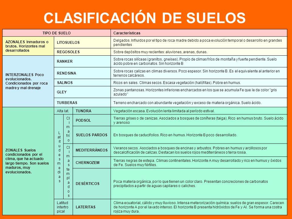 CLASIFICACIÓN DE SUELOS TIPO DE SUELOCaracterísticas AZONALES Inmaduros o brutos.