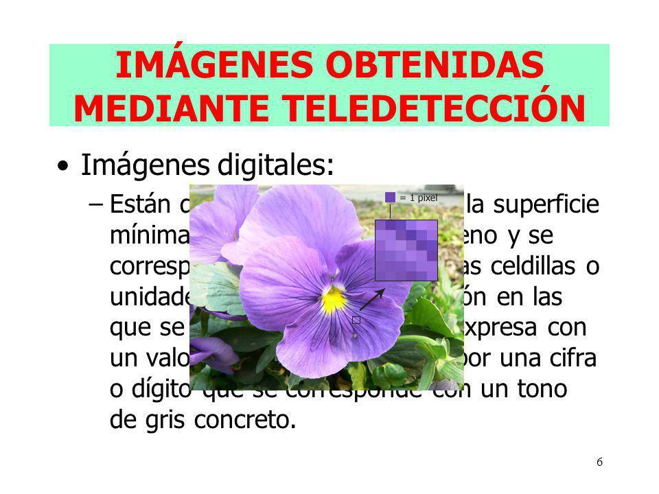 6 IMÁGENES OBTENIDAS MEDIANTE TELEDETECCIÓN Imágenes digitales: –Están divididas en PÍXELES: es la superficie mínima detectada sobre el terreno y se c