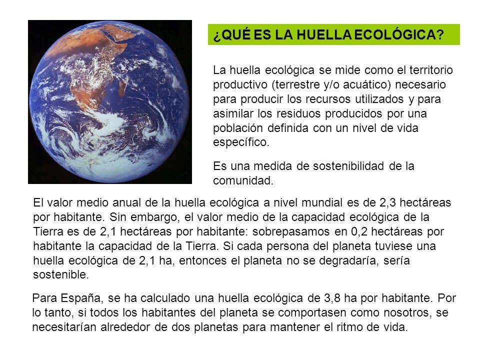 ¿QUÉ ES LA HUELLA ECOLÓGICA? La huella ecológica se mide como el territorio productivo (terrestre y/o acuático) necesario para producir los recursos u