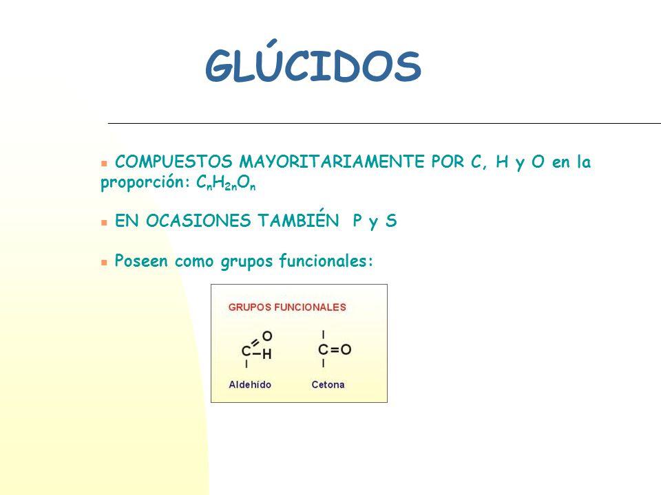 GLÚCIDOS COMPUESTOS MAYORITARIAMENTE POR C, H y O en la proporción: C n H 2n O n EN OCASIONES TAMBIÉN P y S Poseen como grupos funcionales: