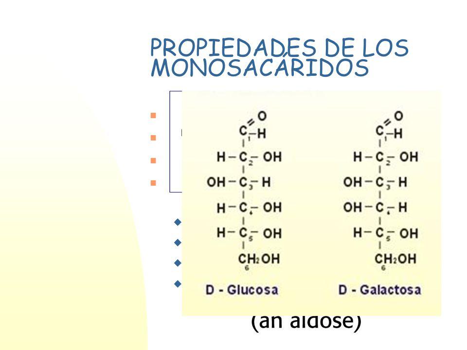 PROPIEDADES DE LOS MONOSACÁRIDOS Sólidos cristalinos, solubles en agua Tienen sabor dulce Carácter reductor Presentan estereoisomería (existencia de C