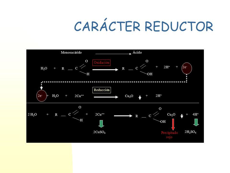 CARÁCTER REDUCTOR R C H O R C OH O H2OH2O 2H + 2e - + ++ H2OH2O++ 2Cu ++ Cu 2 O +2H + 2 H 2 O+ R C H O + 2Cu ++ R C OH O Cu 2 O+4H + 2CuSO 4 2H 2 SO 4